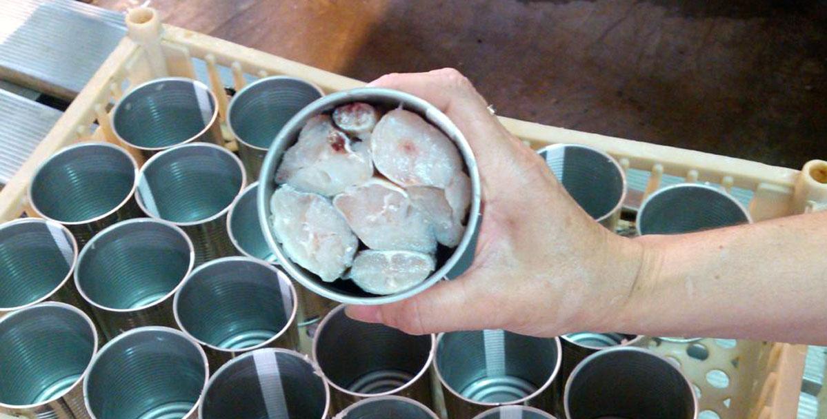 Resultado de imagen para El Gobierno licita la compra de 2,4 millones de latas de merluza en conserva