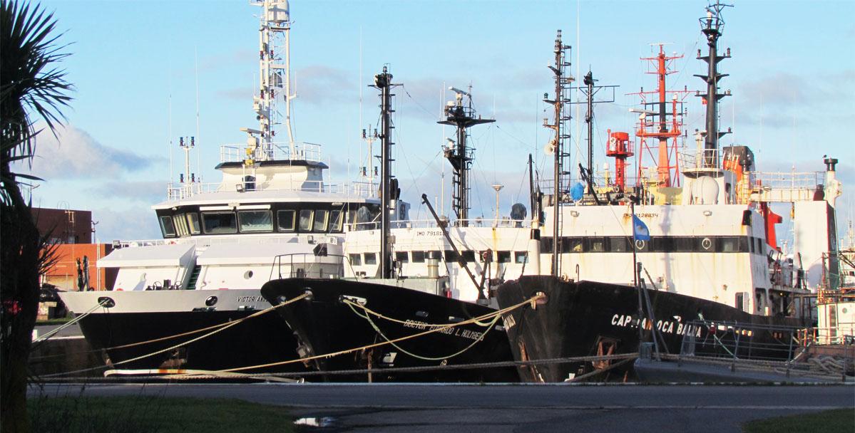 El Gobierno relanzó Pampa Azul, pero los buques del Inidep no ...